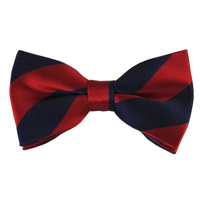 4th-8th Red and Navy Striped Bow Tie for Boys - UT